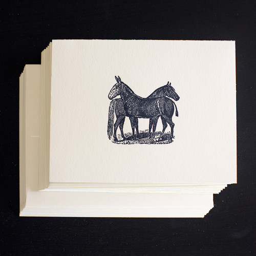 Companions NOte Cards