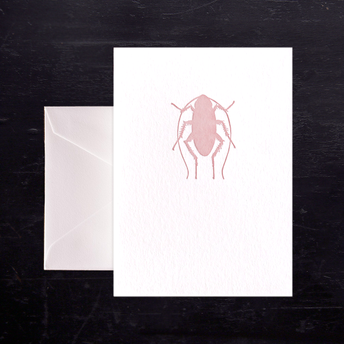 Pink Bug Note Card