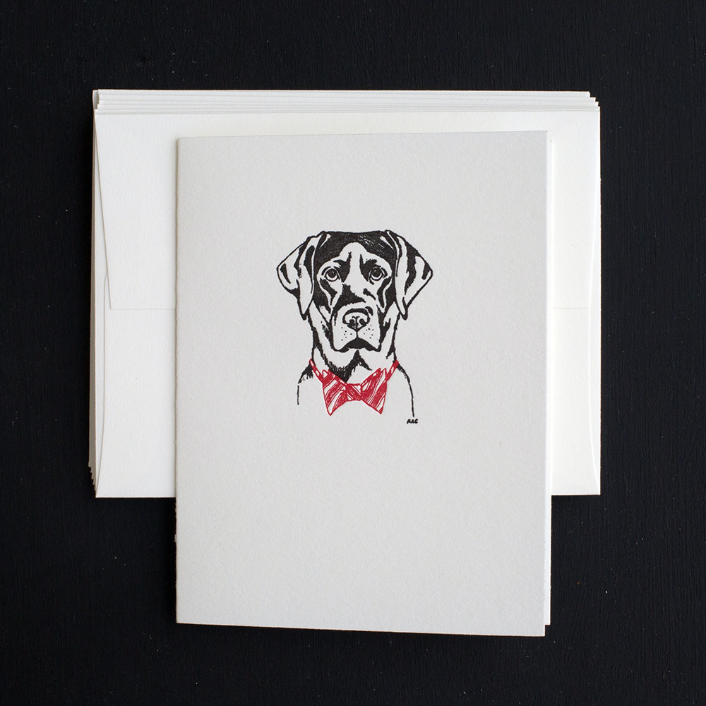 Festive Lab Note Cards | Ancesserie